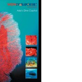 ad-covers-2006-2007-ria-15